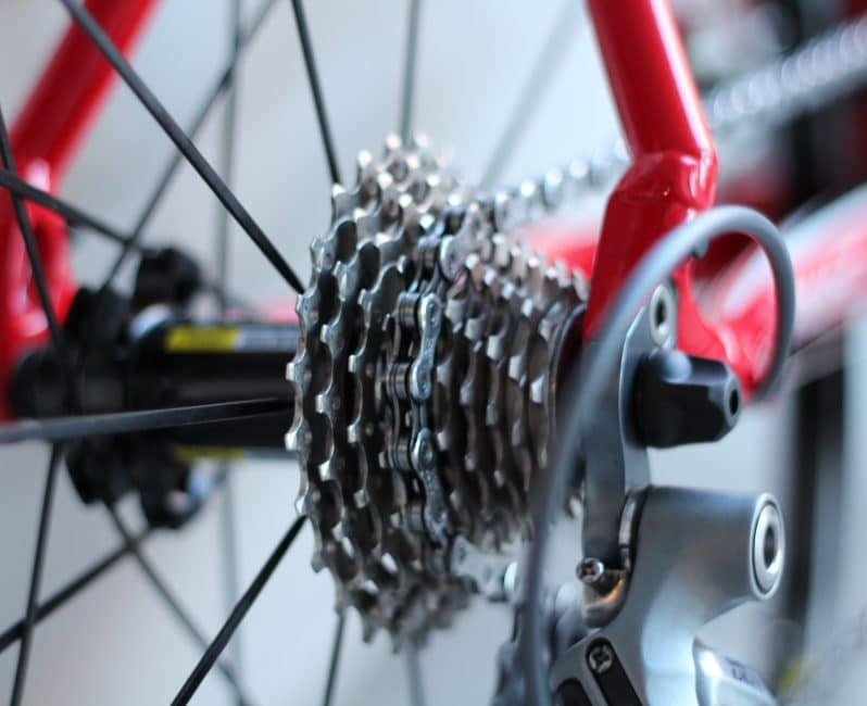 The bicycle chain