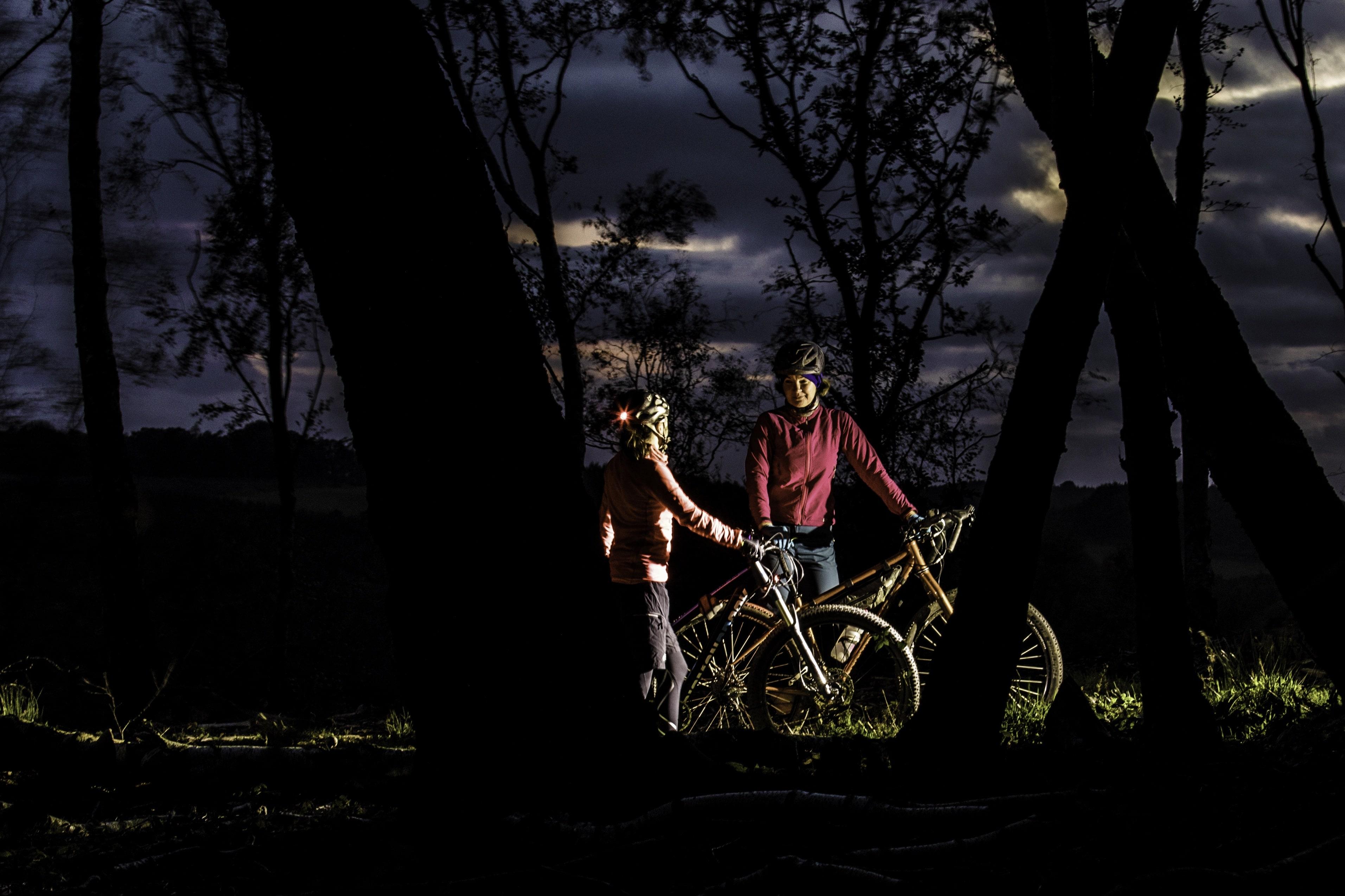 Dark Skies image by Mick Kirkman