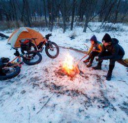 pugs-camping