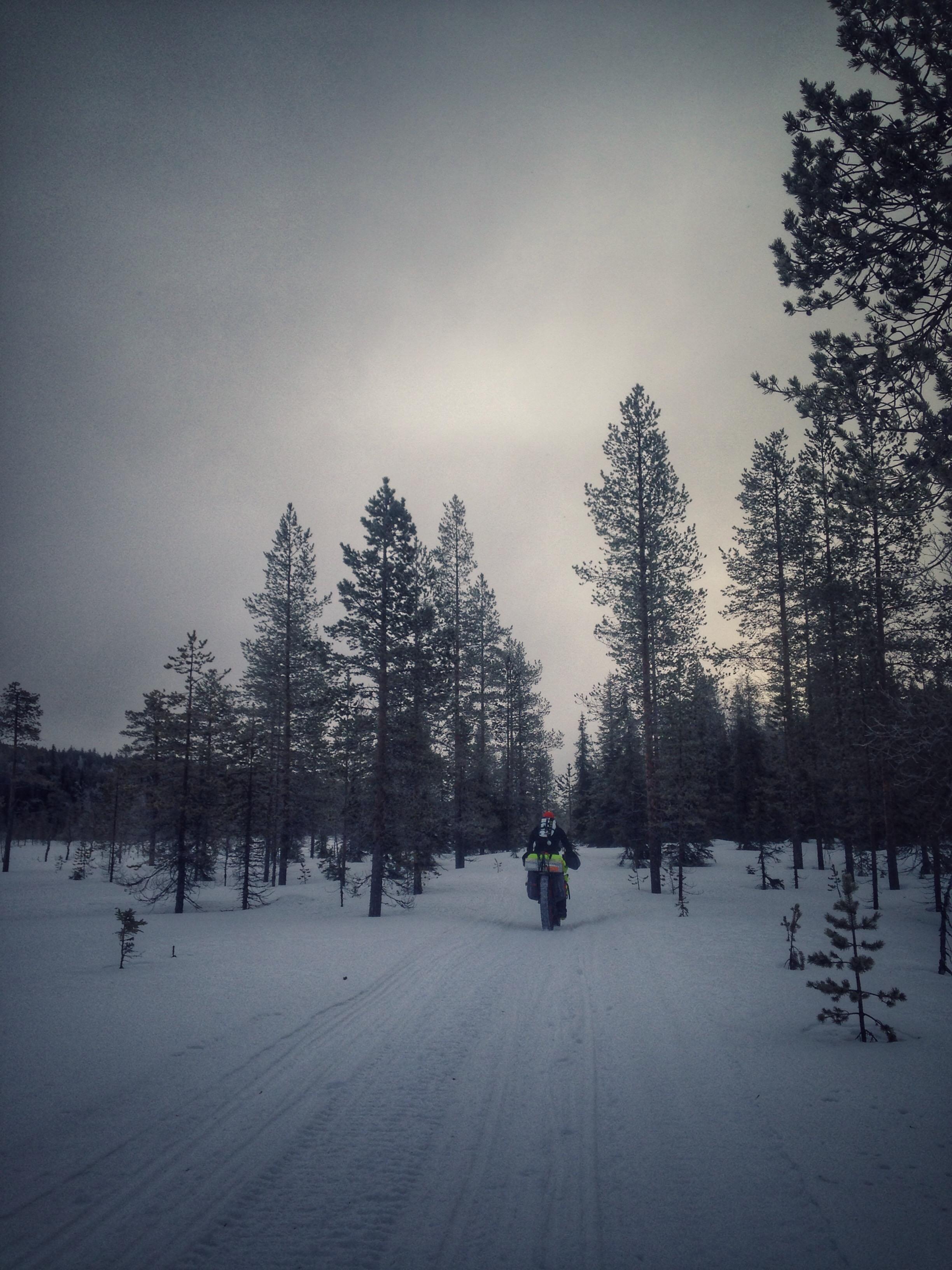 Simon Bryant snowscape