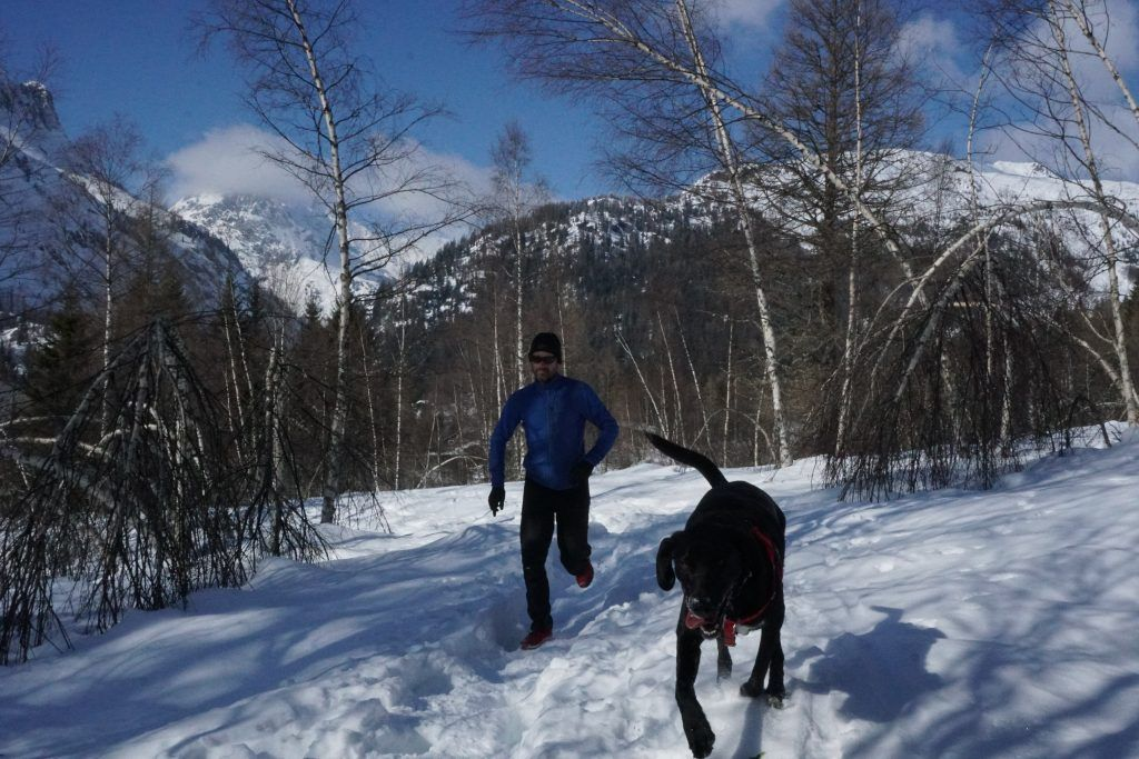 Gore Primaloft and dog