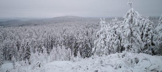 Roll Outdoors Winter Adventures