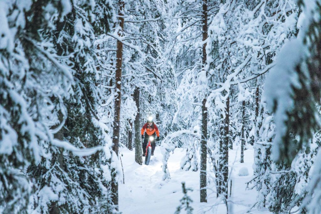 Lost in the trees with Roll Outdoors fat biking