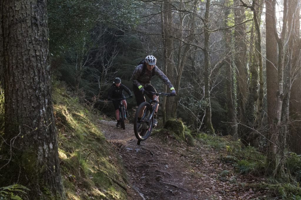 Wales360 forest trails