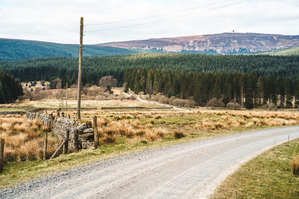 Northumberland Wilderness - image credit: Dan Monaghan
