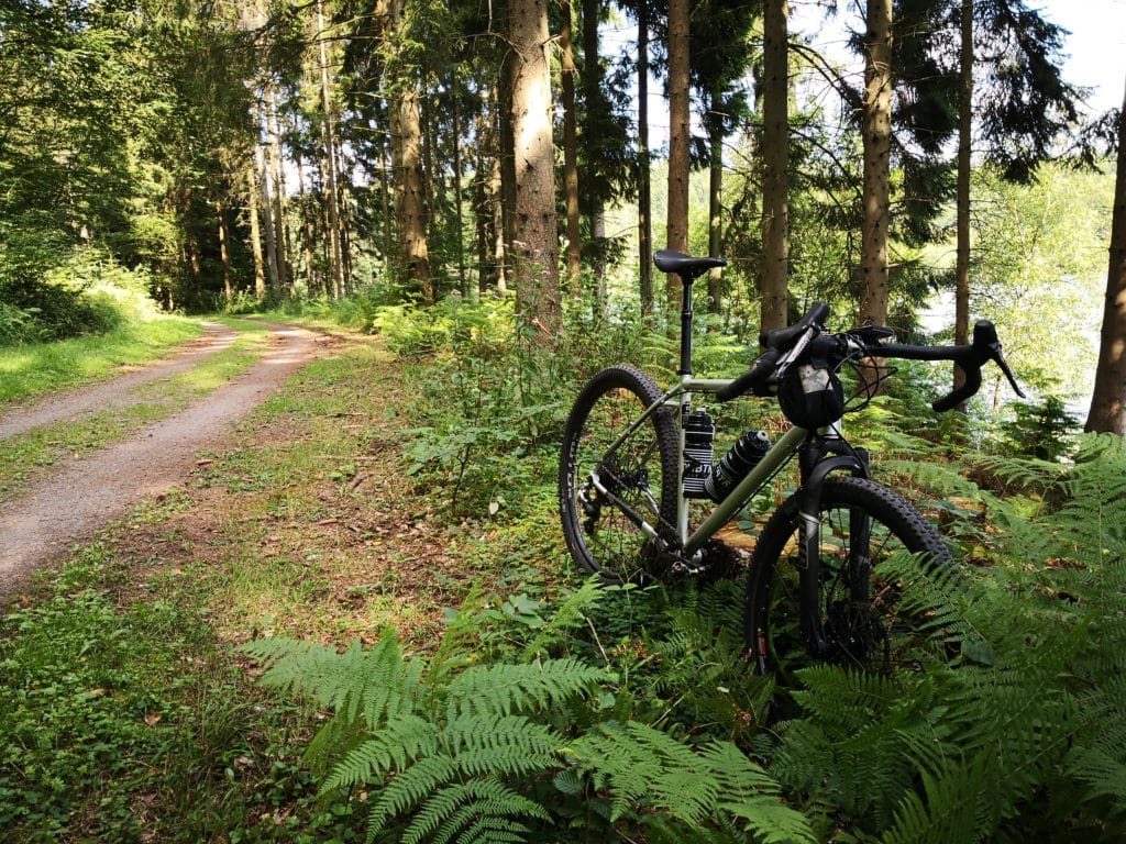 Bombtrack Hook ADV in the forest