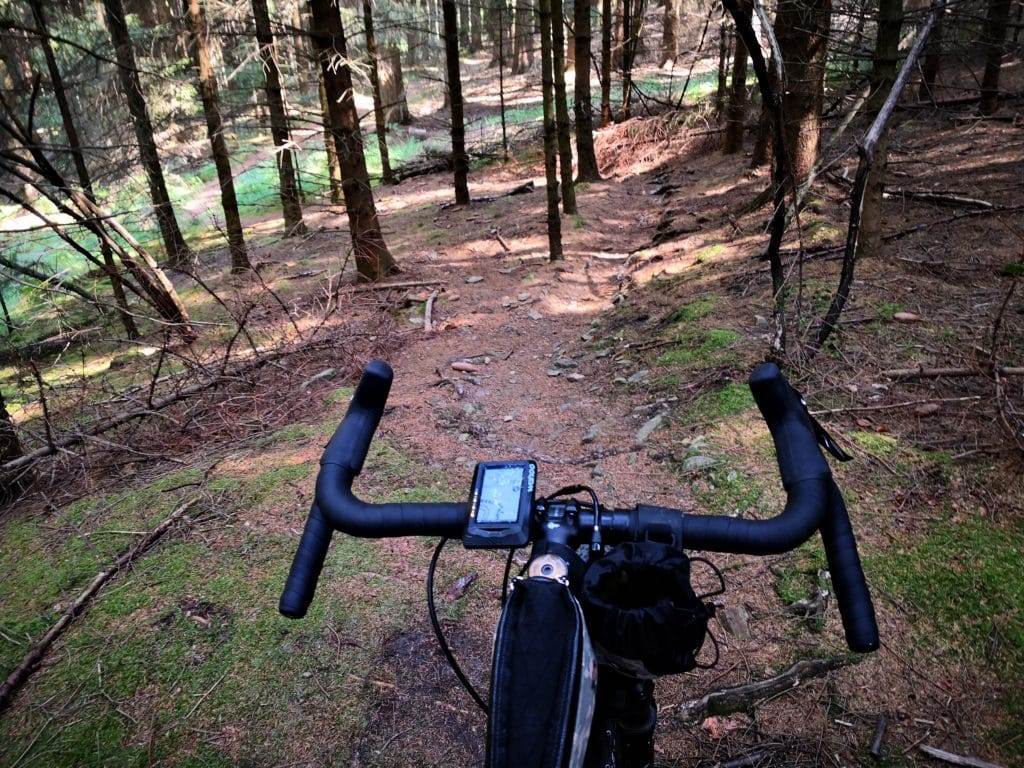 Cyclists view of the singletrack