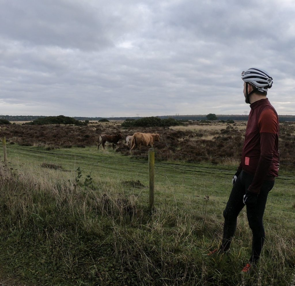 Cyclist and wildlife
