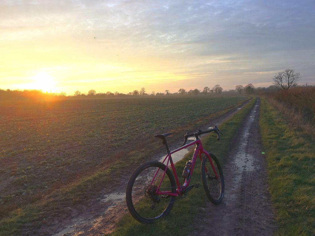 Salsa Cutthroat in the muds of Suffolk