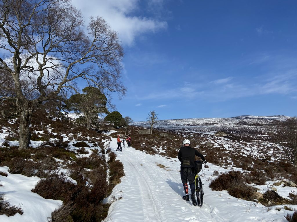 Cairngorms pushing through the snow