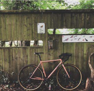 Birding by bike Abi Rose