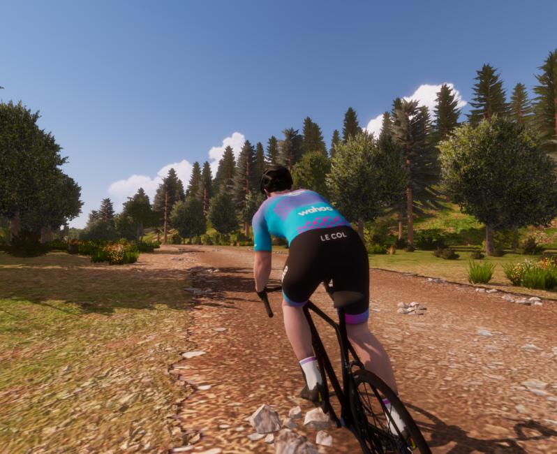 Dirty Reiver virtual RGT cycling