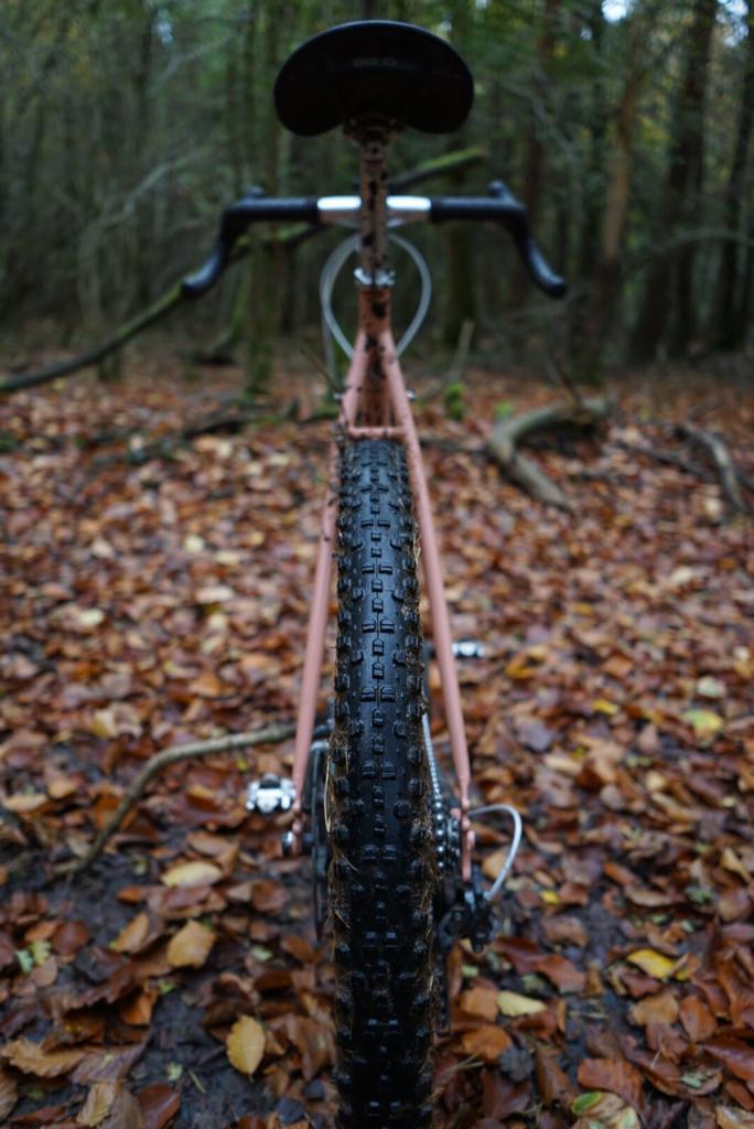 WTB Sendero best winter gravel tyre