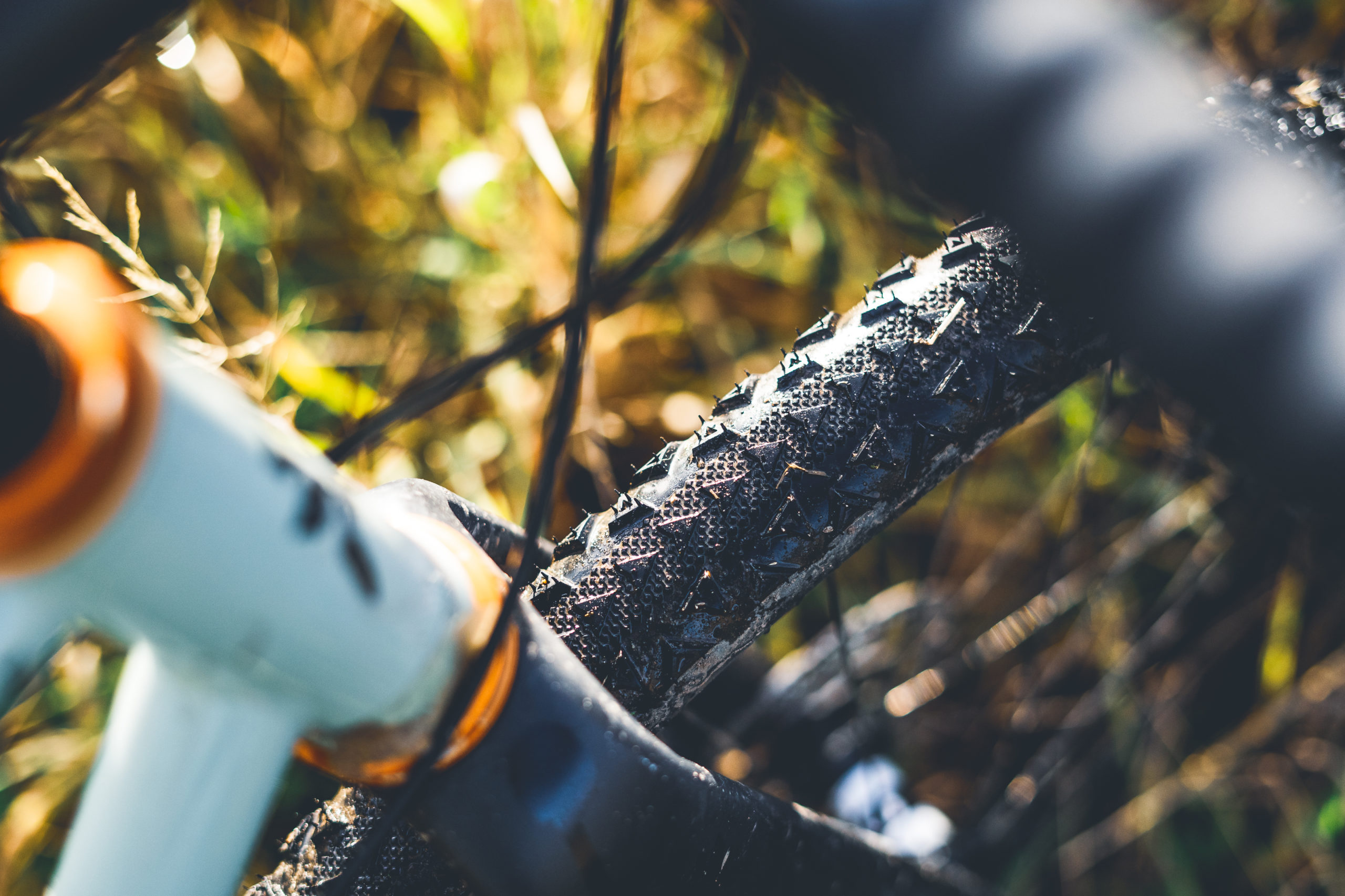 Ultradynamico Rosé Robusto tyre review